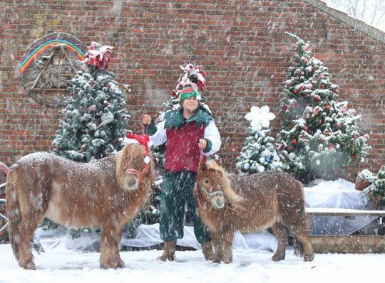 Kerst activiteiten Kinderboerderij